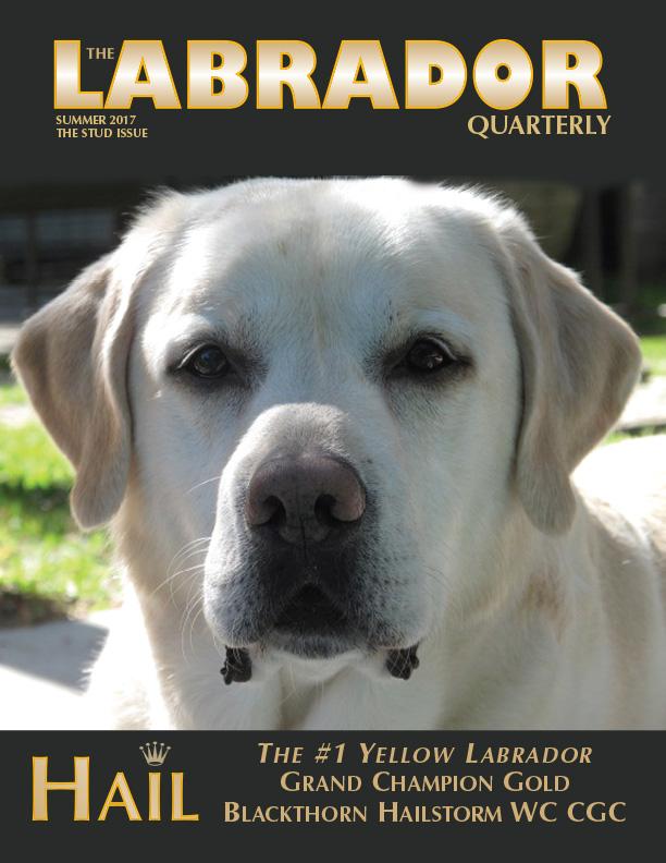 The Labrador Quarterly Magazine
